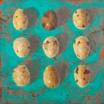 Nine Teal Eggs